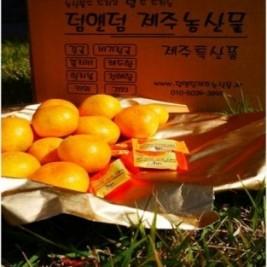 하우스감귤(21년5월수확예정)